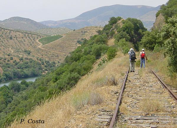 Entre os quilómetros 75 e 77, com o sol a pino e sem qualquer túnel, a caminhada é difícil.